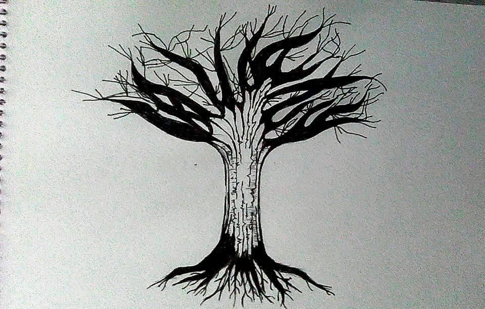 Day 13 Tree.jpg